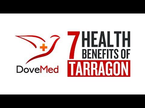 7 Health Benefits Of Tarragon