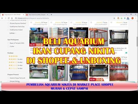Beli Aquarium Ikan Cupang Nikita Di Shopee Murah Dan Unboxing Tahap 1 Youtube