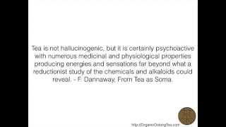 Alchemy of Organic High Mountain Oolong Tea | OrganicOolongTea.com