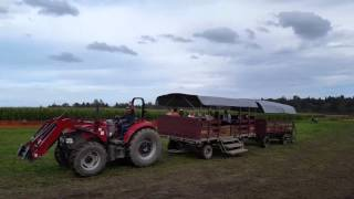 Washington State Corn Maze Tractor Ride