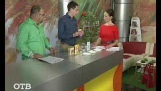 Советы потребителям: как выбрать кошачий корм? (17.07.15)