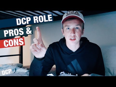 Pro's and Con's of Disney College Program Roles // DCP.33