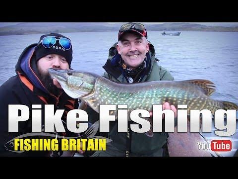 Pike Fishing on Trawsfynydd Lake - Fishing Britain Shorts