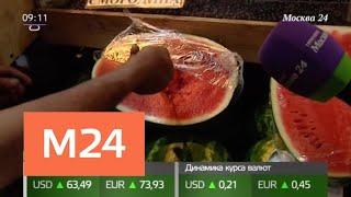 Как отличить идеальный арбуз от некачественного - Москва 24<
