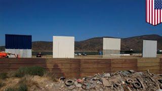 Trump border wall: Critics calling for a virtual border wall - TomoNews