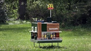 tiny-mcdonalds-are-opening-across-the-world-inside-is-a-restaurant-for-bees
