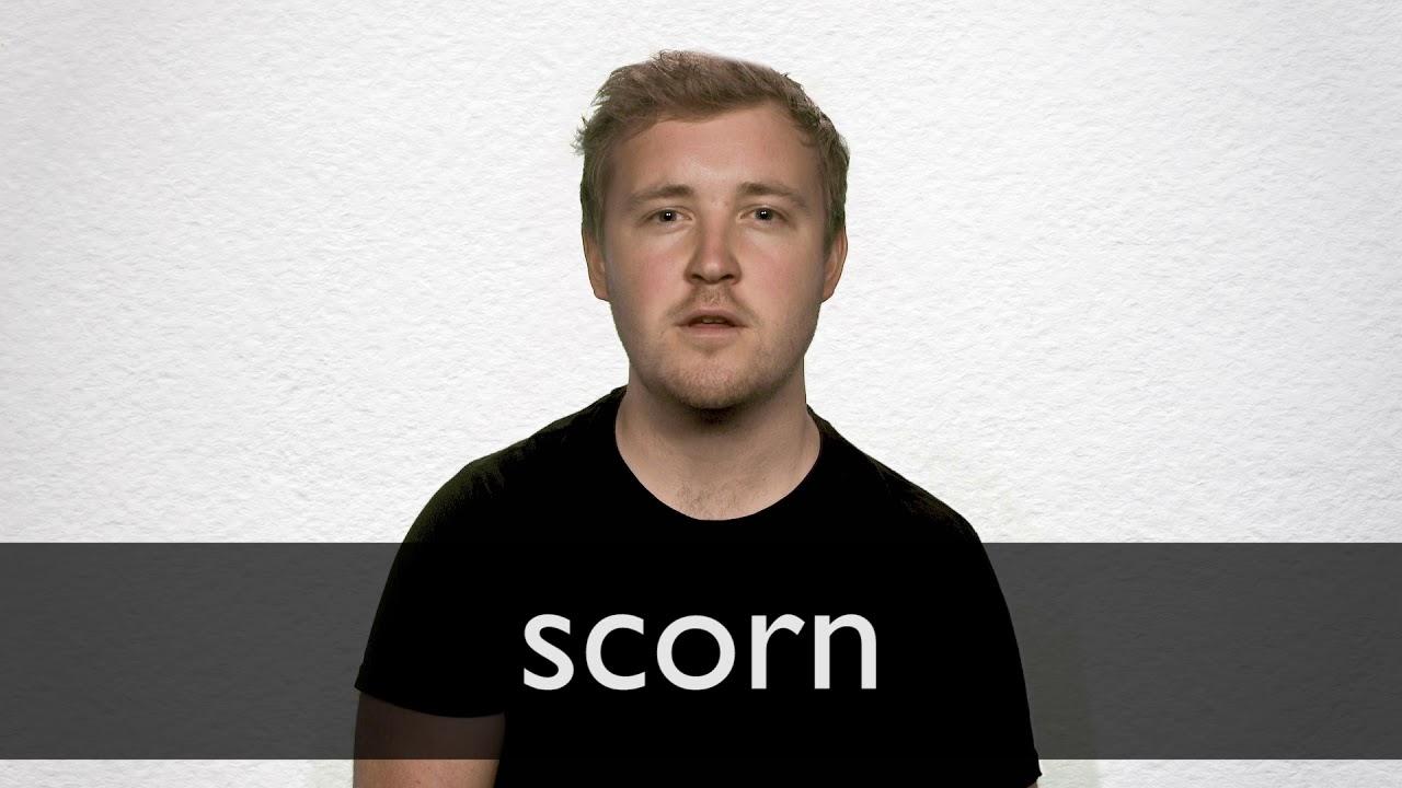 Scorn Synonyms | Collins English Thesaurus