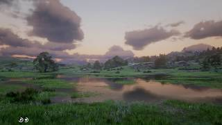 Red Dead Redemption 2 4k HDR dynamic weather and angry muskrat