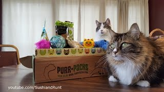 Purr-Packs Unboxing - March Cat Subscription Box Review thumbnail