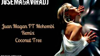 Juan Magan FT Mohombi Coconut Tree Remix(JosemaGaviraDj).wmv