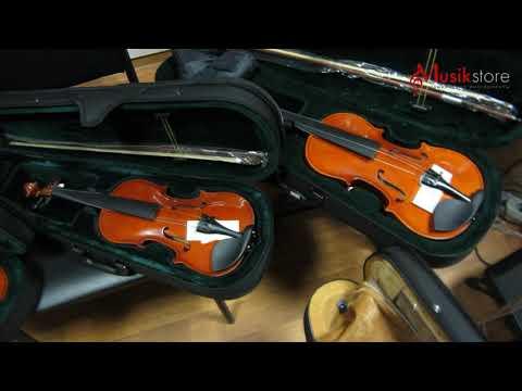 Скрипки. Где купить скрипку и как выбрать для начала? Обзор моделей от Мьюзик-Стор | Musik-store.ru