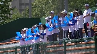 【高校野球】宝塚東vs加古川西(2016秋季兵庫県大会・1回戦)