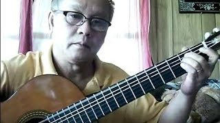 Như Cánh Vạc Bay (Trịnh Công Sơn) - Guitar Cover