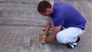 He Heard Noises from Under the Sidewalk and So Started Digging. What He Found? Unbelievable