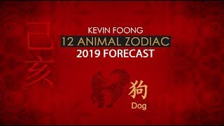 2019 Dog Animal Sign Forecast By Master Kevin Foong
