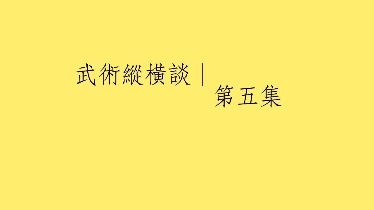 傅式八卦門:武術縱橫談 第五集——傅式八卦掌步法 (趙培魯師傅講述 同門馬永恒演示) - YouTube