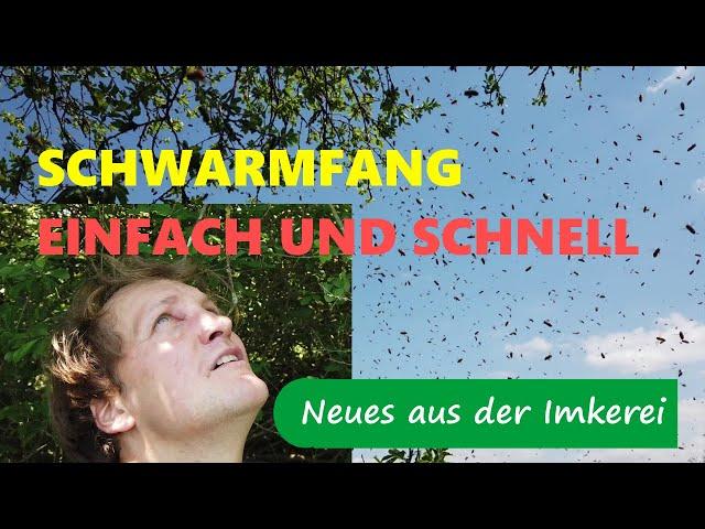 Bienenschwarm/ Naturschwarm sicher und schnell einfangen - Neues aus der Imkerei