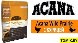 Купить Корм Акана в Минске для КОШКИ Acana Wild Prairie корм котят в Минске TOMIK.BY зоомагазин