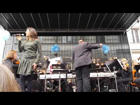 VBW Musical Fest 2014 - Totale Finsternis