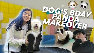 Download lagu DOG'S BIRTHDAY PANDA MAKEOVER | Ranz and Niana