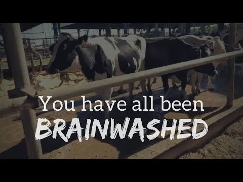 How the dairy industry brainwashes us | Family Dairy Day