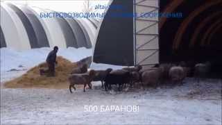 видео Как построить сарай своими руками для курей, кроликов, быков, козы и других животных. Сарай из бруса, пеноблоков, шпал