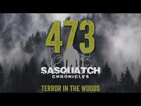 SC EP:473 Terror in the Woods