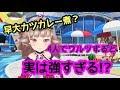 【リンクスリングス】グレードバトルB(ロクサーヌ)Live