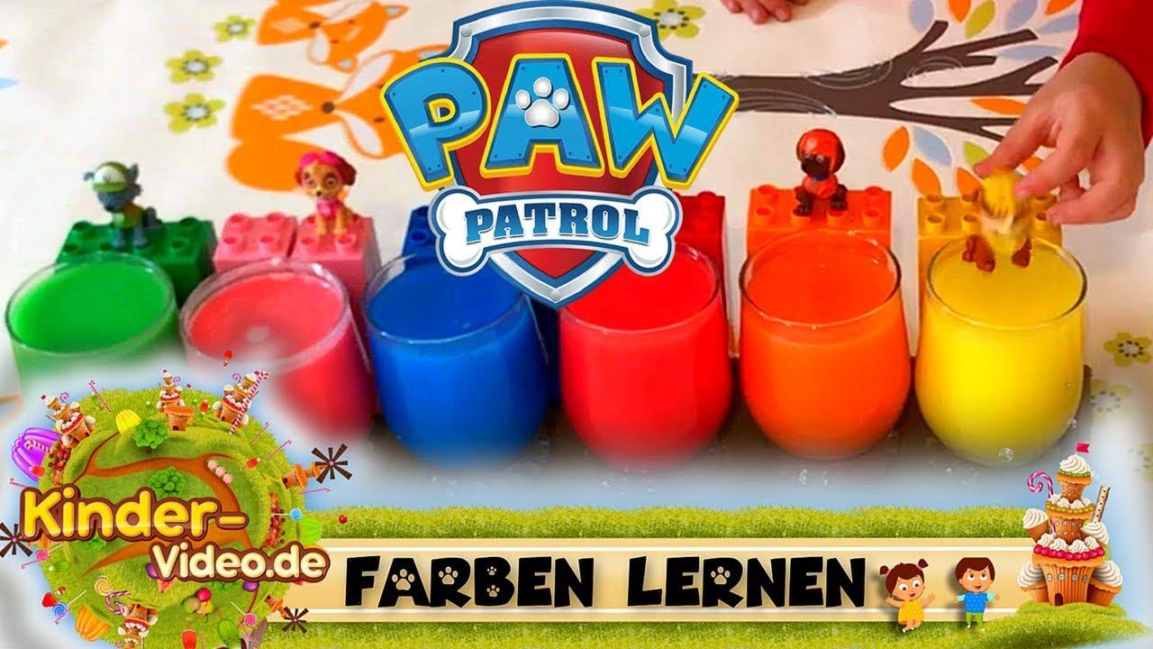 paw patrol lied