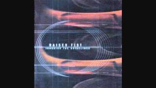 Raised Fist - The models on tv