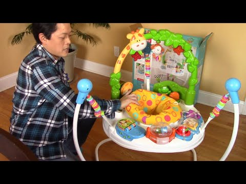 Fisher-Price Go Wild Jumperoo - Unboxing, Assembly, And Overview
