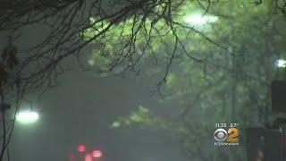 Storm Brings Blasting Wind To Long Island