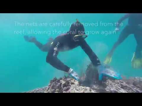 NOAA PIFSC Marine Debris Project