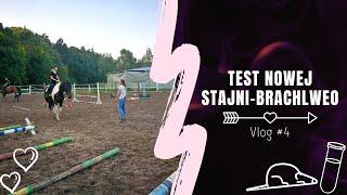 Test nowej stajni - Brachlewo | VLOG #4