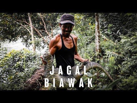 """Jagal Biawak"" - Dokumenter UAS Visual Story for Journalism UMN"