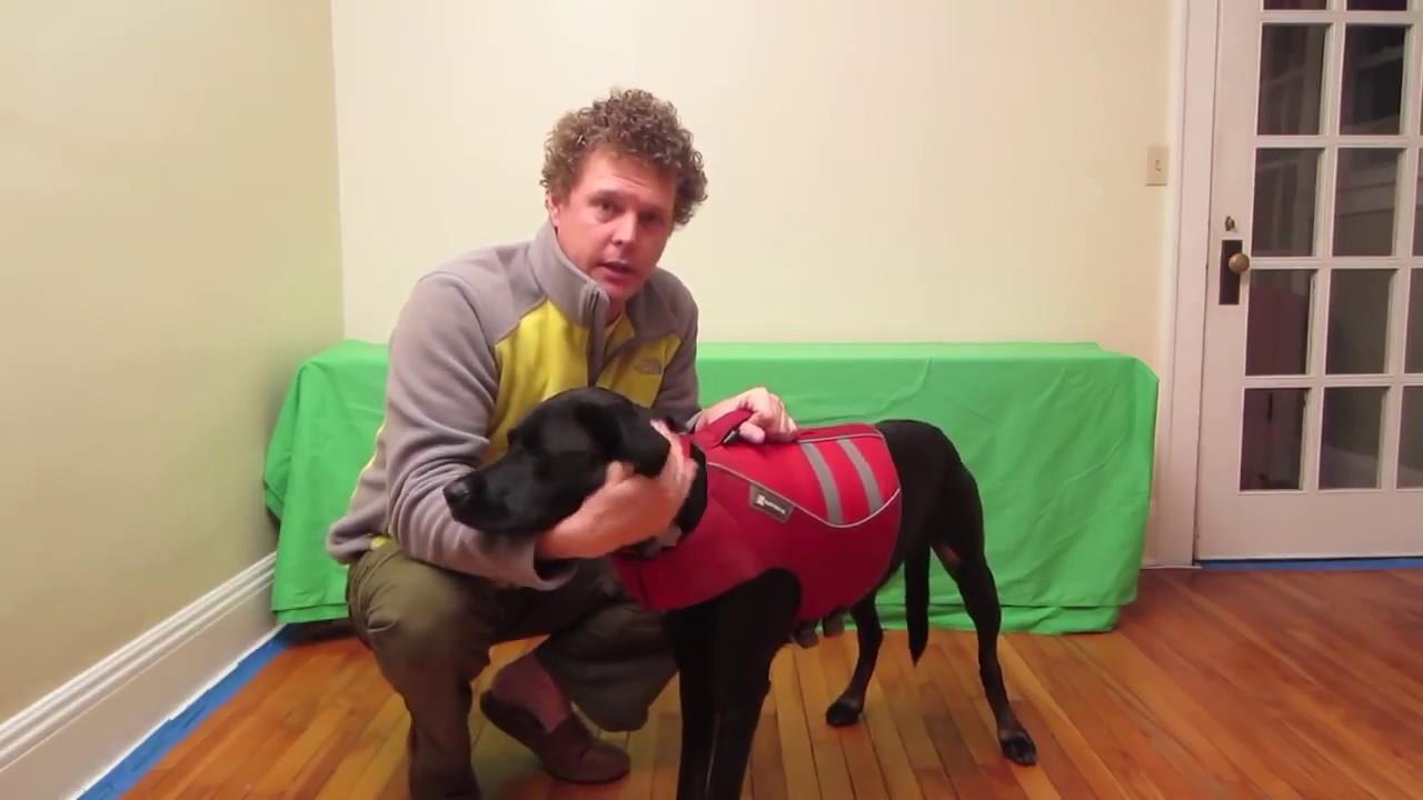 Ruffwear K 9 Float Coat In List Top 8 Best Large Dog Life Jacket
