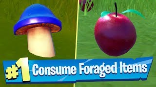 Consume Foraged Items Locations - Fortnite Battle Royale (Hide and Seek Challenge)
