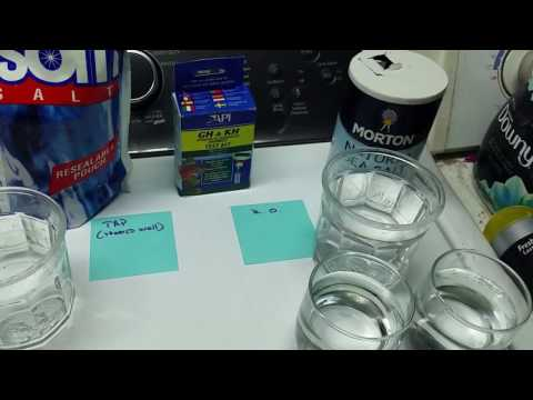 Water Hardness Test Strips: How Accurate Are They?