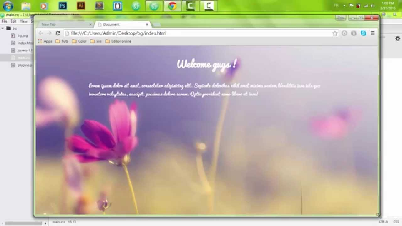 Background image 100 responsive -  Responsive Full Background Image Using Css3