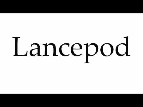Header of lancepod