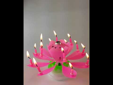 Pink Lotus Flower Musical Birthday Exciting Candle