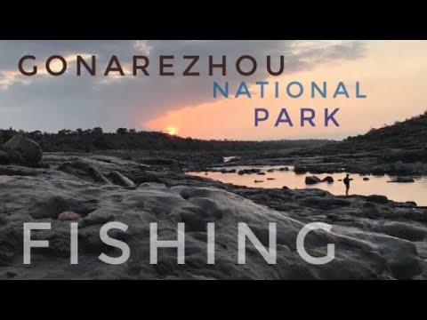 Tiger Fishing And Camping On The Runde River Gonarazou National Park