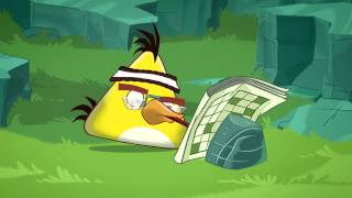 "Angry Birds Toons: ""Chuck Time"""