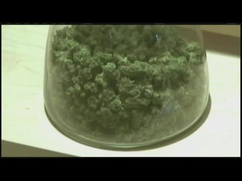 [Health] Health leaders to discuss proposed changes to state's medical marijuana law