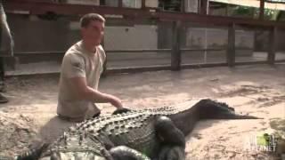 Triple Amputee Wrestles a Gator   Gator Boys