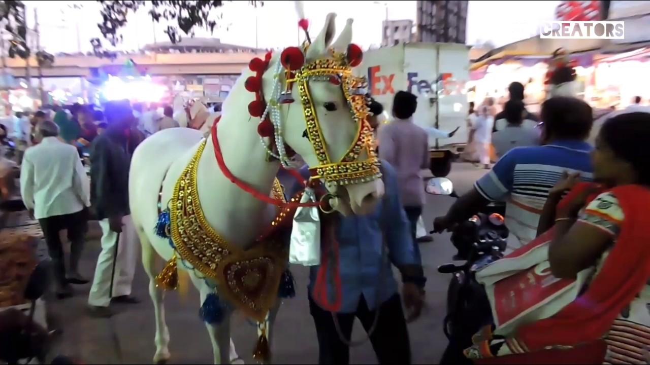 TAJUDDIN BABA II Chota Tajbaag Sandal II Nagpur ,india (URUS)2016