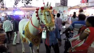tajuddin baba ii chota tajbaag sandal ii nagpur india urus 2016