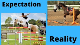 Expectation vs Reality   Equestrian Edition