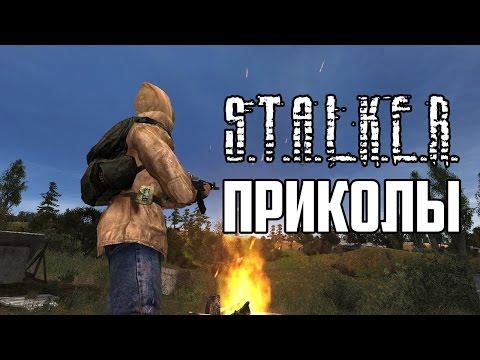 Stalker- - портал по серии игр .