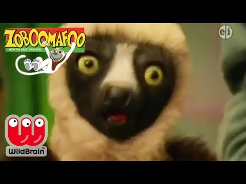 Zoboomafoo | Full Episode: All Goat Play | Animals For Kids
